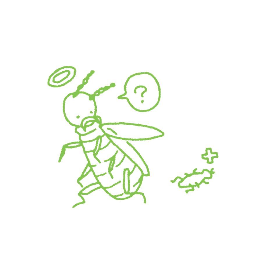 シロアリの習性を利用して、巣ごと退治。